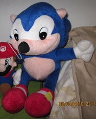 How To Avoid Fake Sonic Merchandise 15