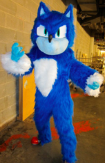 Sonic The Hedgehog Fan Items 17